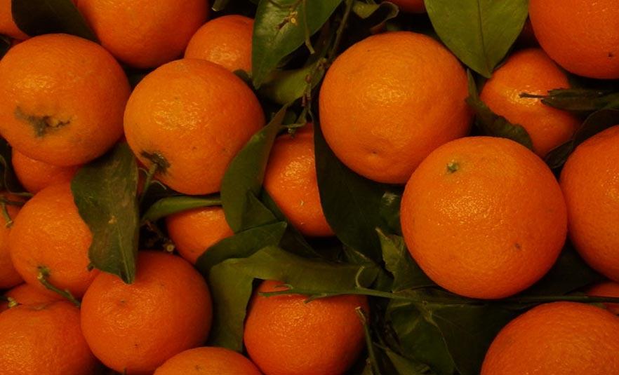 Naranjas EROSKI NATUR