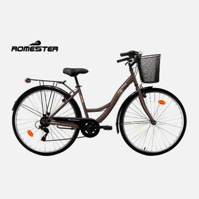 Bicicleta paseo Deba