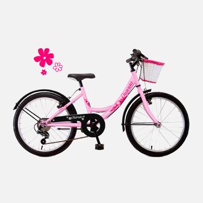 """Bicicleta Romester paseo Olanda 20"""""""