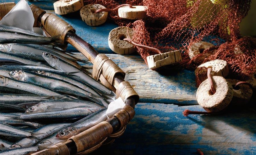 Temporada de la anchoa del Cantábrico en EROSKI