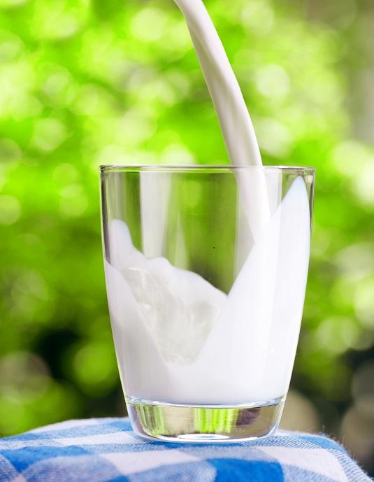 leche alimento saludable