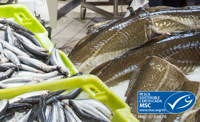 MSC pesca sostenible certificada - EROSKI