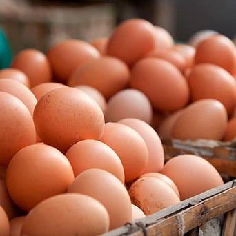 Huevos, Reyno Gourmet