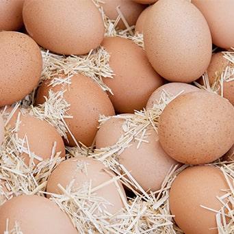 Huevos, De gallinas criadas en Baleares