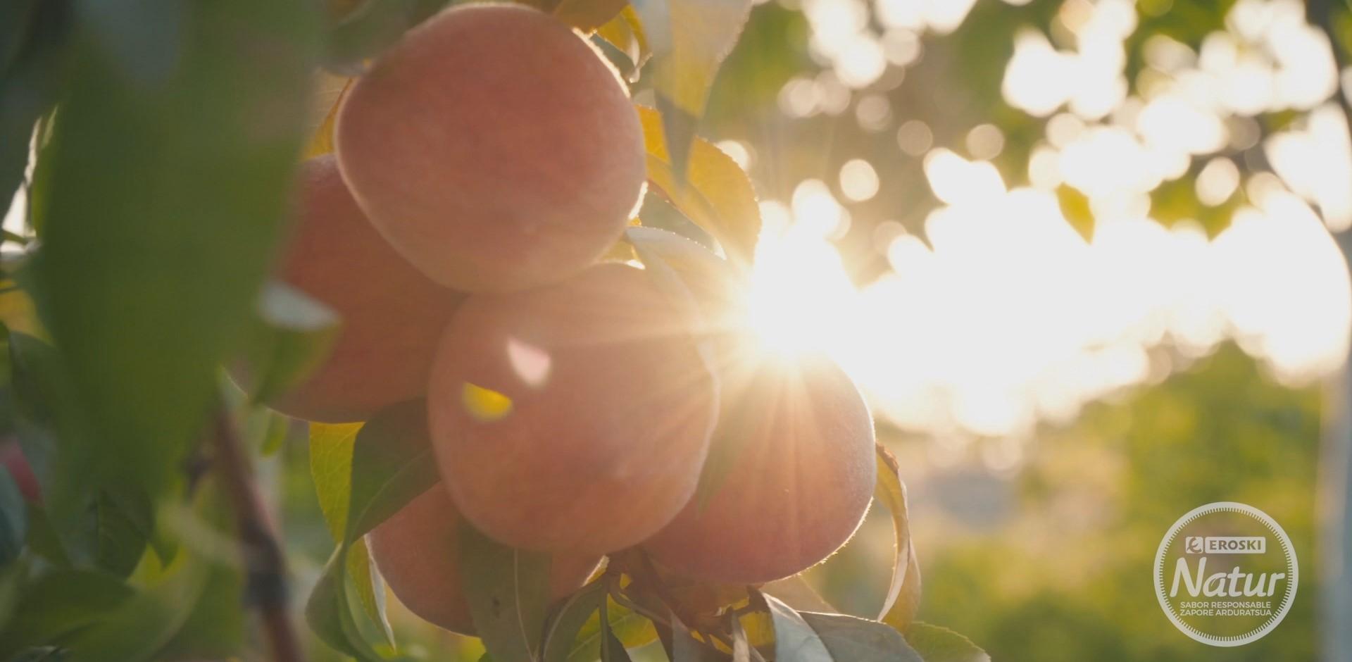 Verano saludable y sostenible con la fruta de hueso EROSKI Natur